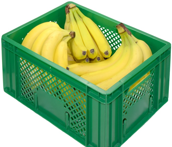 Bio-Bananen-Kiste_frei